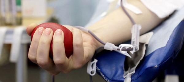 Doação de sangue: a solidariedade não pode parar